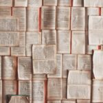 Başyazı | Edebiyat: Özgürlüğe giriş pasaportumuz!
